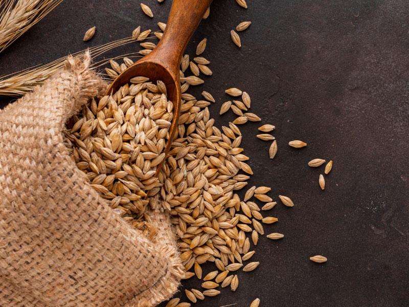 Galatea - i benefici delle fibre